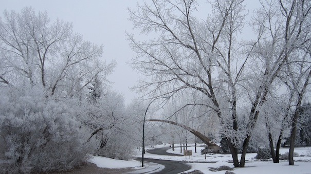 Calgary in winter