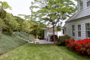 bryn englewood backyard copy.jpg